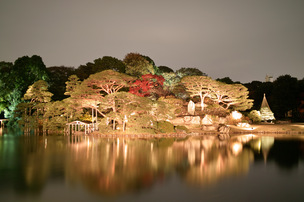 六義園の紅葉ライトアップ-中の島
